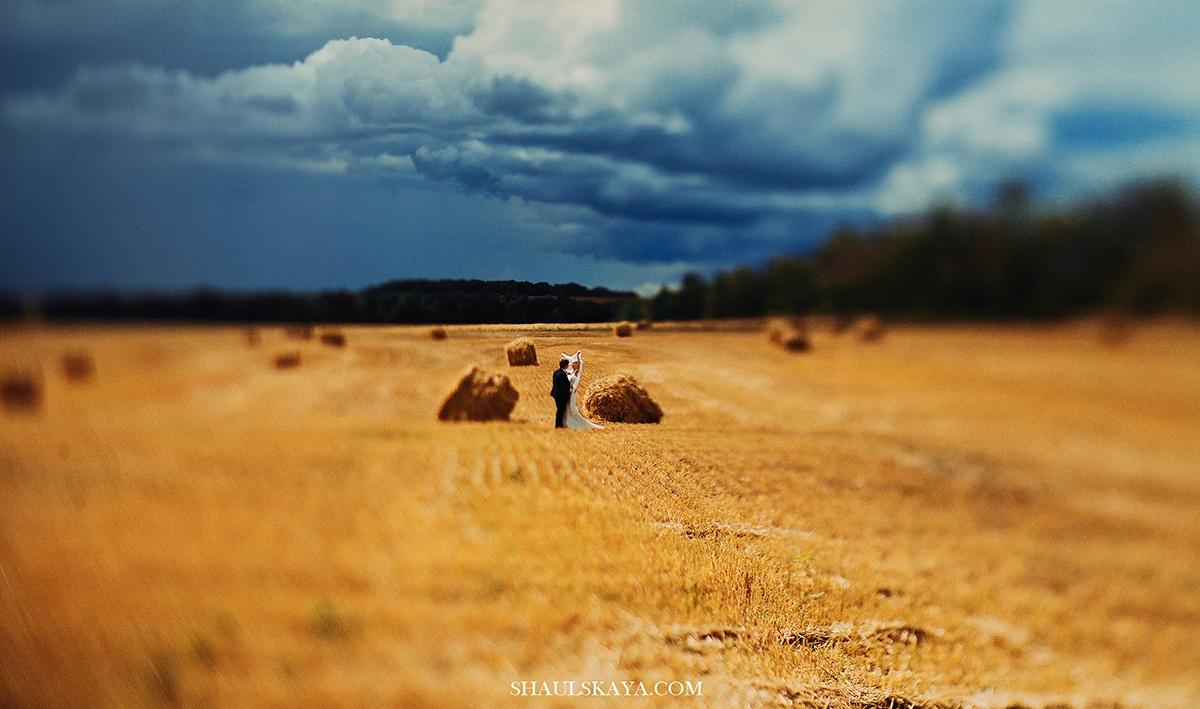 фотосессия в поле Харьков фото
