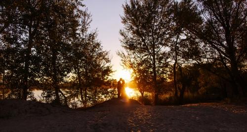 весільне сонячне фото Харків