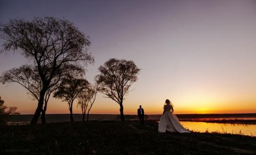 солнечные свадебные фотографии Анна Шаульская фото