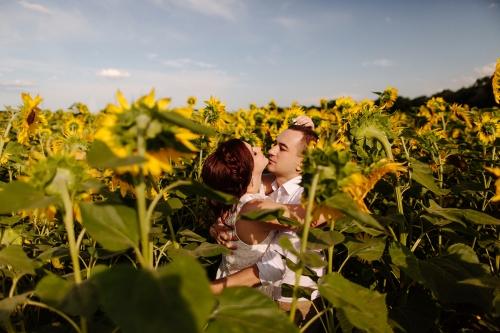 фотография молодых в подсолнухах Харьков фото