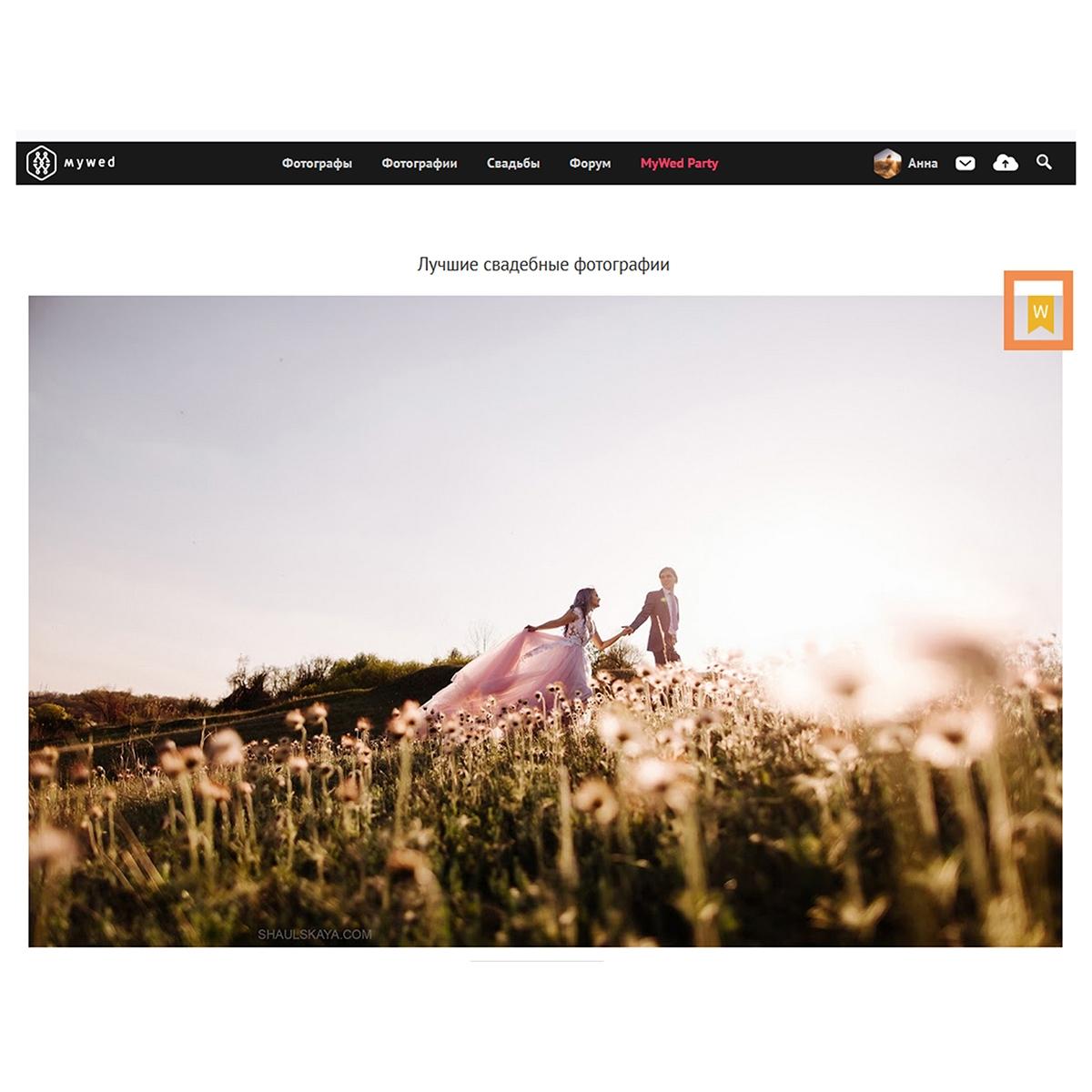 профессиональная свадебная фотосессия Харьков фото